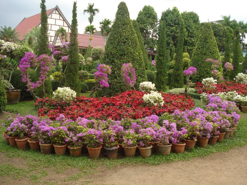 day7 495 800x600 Beautiful Topiary and Flowers at Nong Nooch Gardens