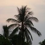 Sunset in Nakom Phanome