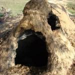 Opened Mound