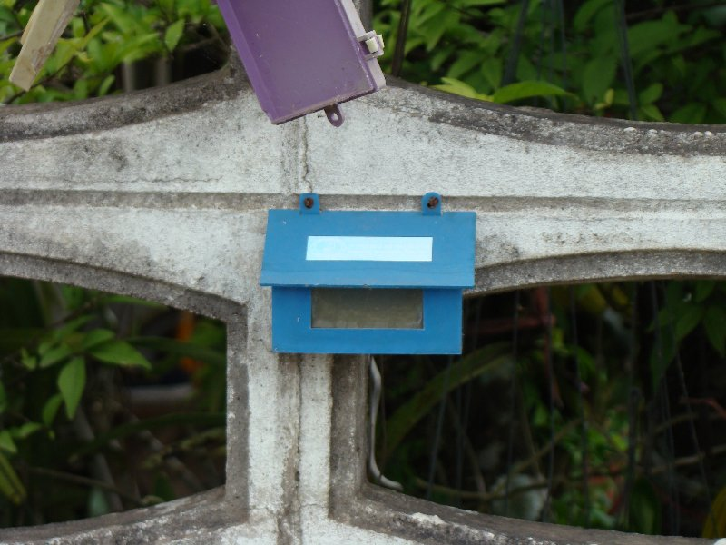 Little blue mail box