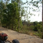 Rural Thailand as Viewed from a tractor (17)