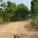 Rural Thailand as Viewed from a tractor (7)