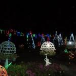 Thailand Christmas (6)