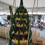 Pattaya Cultural Festival